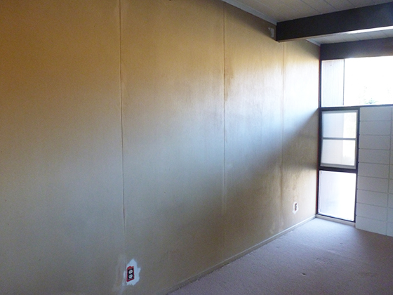 peeled-office-wall