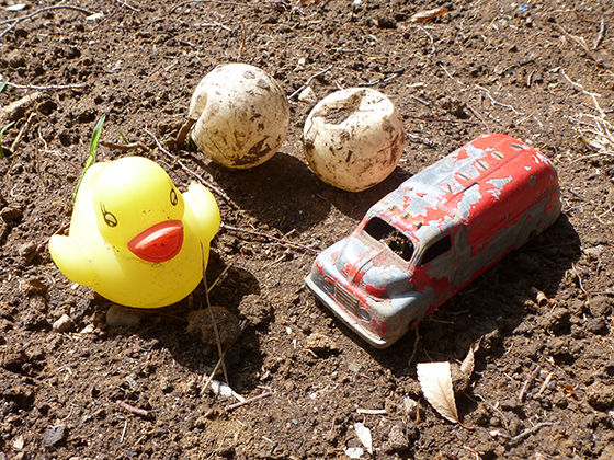 digging-finds