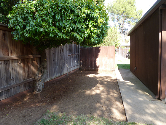 patio-backyard-fence