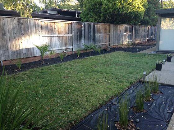 patio-planting