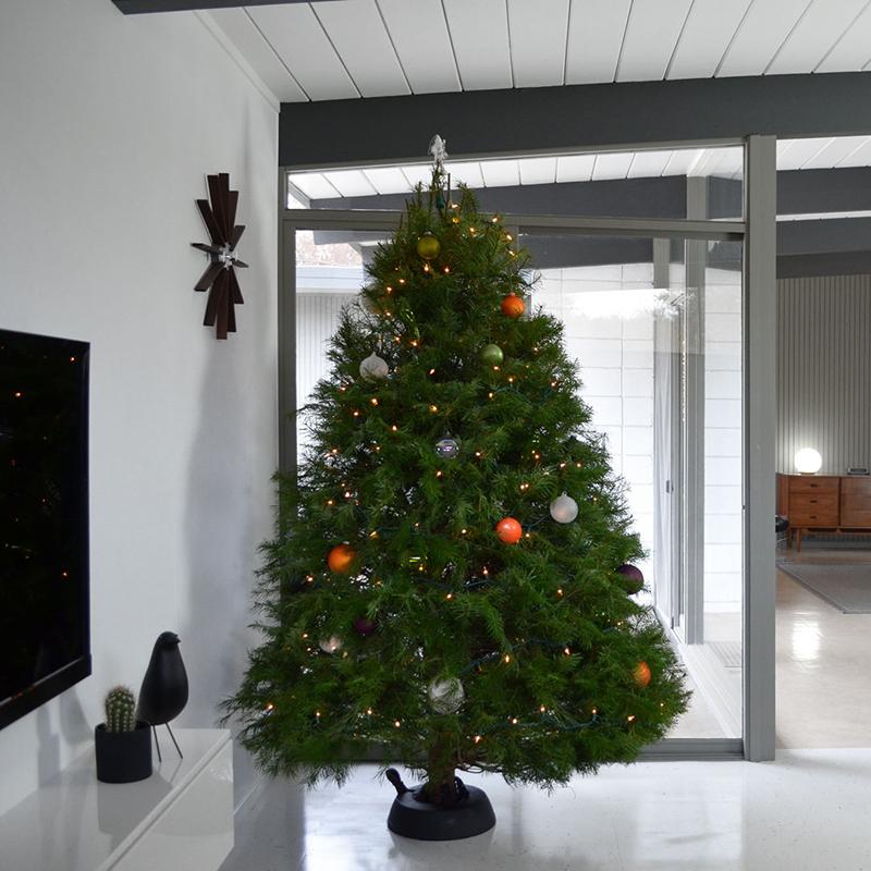 eichler-christmas-3-doug