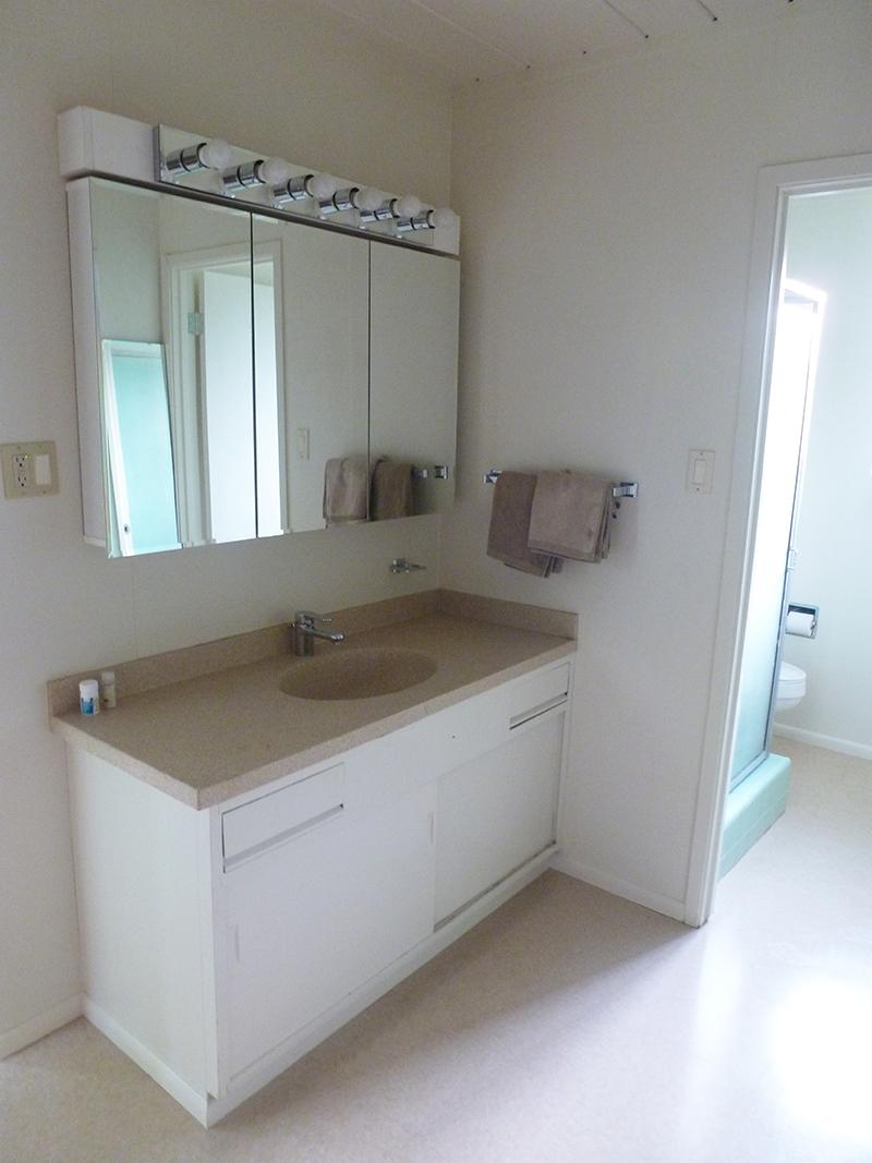master-bath-vanity-day-1