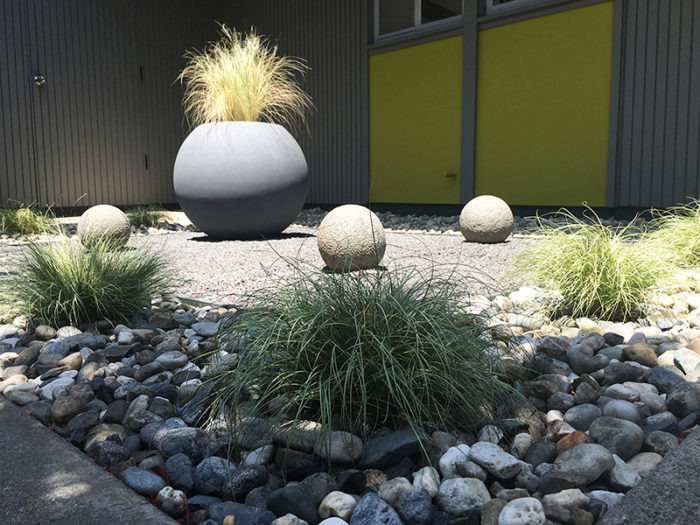 courtyard-grasses