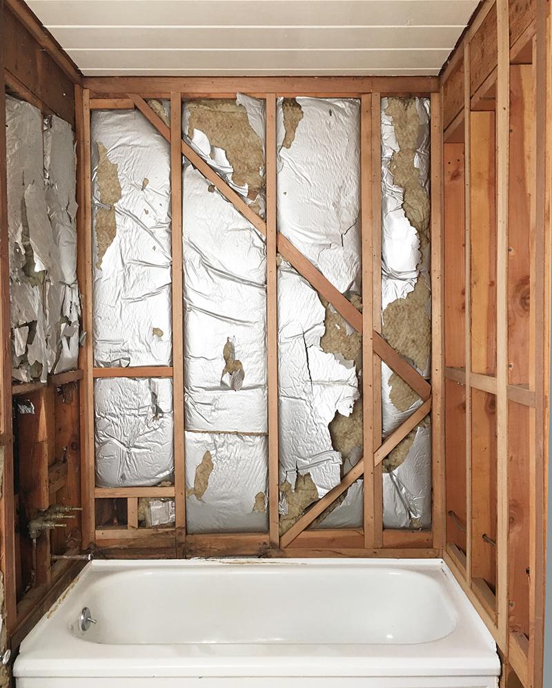 guest-bath-walls-off